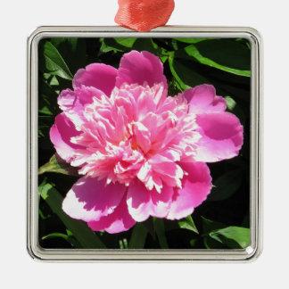 Roze Pioen Zilverkleurig Vierkant Ornament