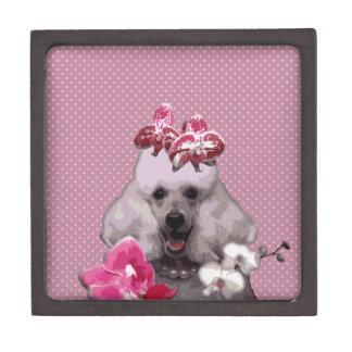 """Roze poedelMiddel (3"""" X 3"""") Premium Decoratiedoosje"""