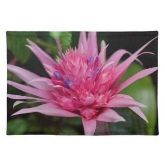 Roze Schoonheid Placemat