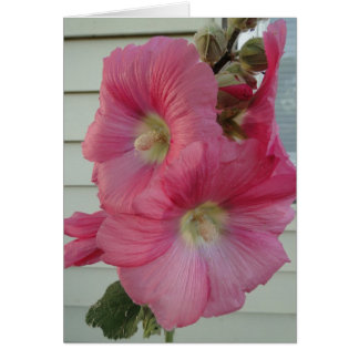 Roze Stokroos, de Mooie Dame van de Verjaardag Kaart