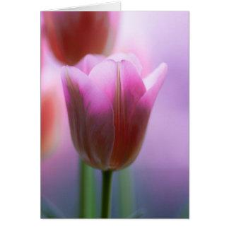 Roze tulpen kaart