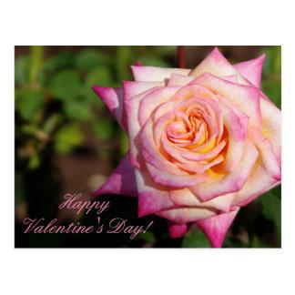 Roze Valentijn nam toe Briefkaart