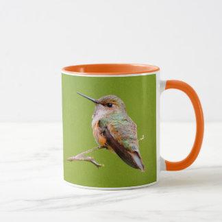 Rufous Zitting van de Kolibrie in de Sering van Mok