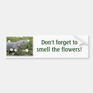 Ruik de Sticker van de Bumper van Bloemen