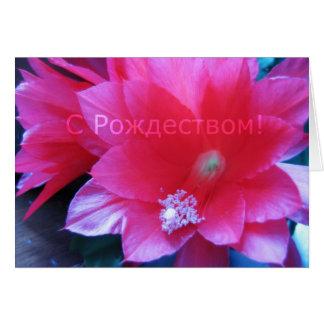 Russische Vrolijke Kerstkaart, de Cactus van Wenskaart