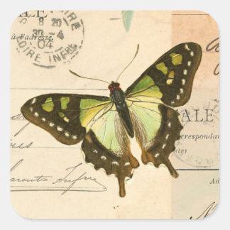Rustieke vintage vlinder in groene sticker