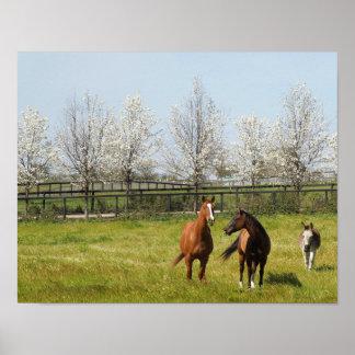 Ruw spel: Twee Paarden en een Ezel in de Lente Poster