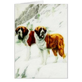 ruwe en vlotte Sint-bernard die - schilderen Briefkaarten 0