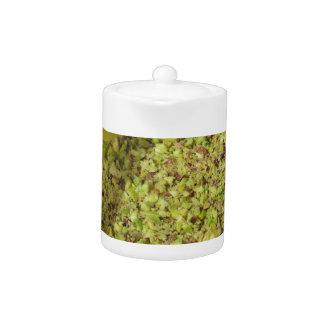 Ruwe gehakte pistaches in een plastic voedselpan