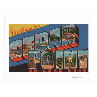 Sandusky, Ohio - Meer Erie - het Punt van de Ceder Briefkaart