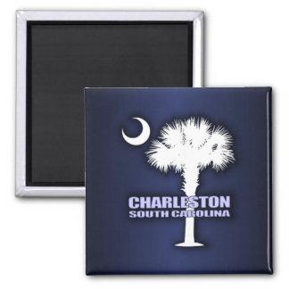 Sc Palmetto & Halve maan (Charleston) Magneet