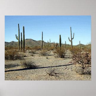 Scène 16 van de Woestijn van Sonoran Poster