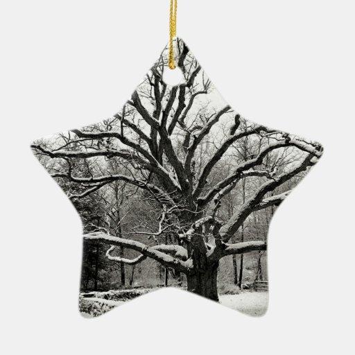 Scène Bedford Eiken New York Ornamenten