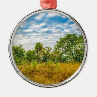 Scène van het Landschap van de weide de Tropische, Zilverkleurig Rond Ornament