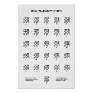Schaak - Fundamentele het Koppelen Patronen Poster