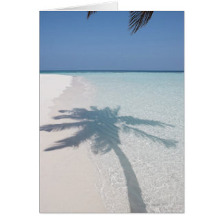 Schaduw van een palm op een verlaten eilandstrand briefkaarten 0
