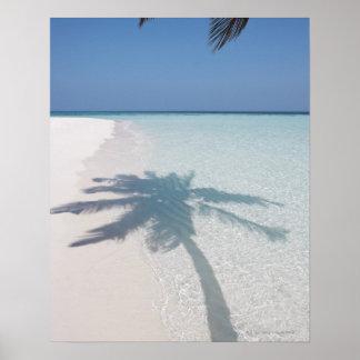 Schaduw van een palm op een verlaten eilandstrand poster