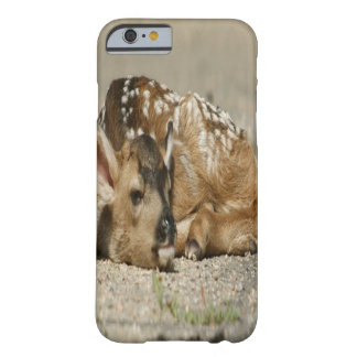 Schattig Baby Fawn Barely There iPhone 6 Hoesje