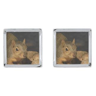 Schattige Eekhoorn Verzilverde Manchetknopen