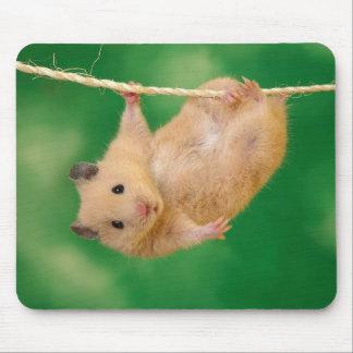 Schattige hamster mousepad muismatten