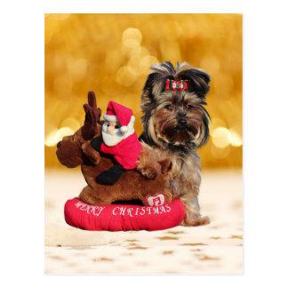 Schattige Yorkshire Terrier Vrolijk Kerstfeest Briefkaart