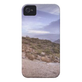 Schilderachtig Arizona iPhone 4 Hoesje
