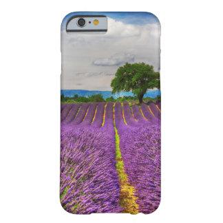 Schilderachtig het Gebied van de lavendel, Barely There iPhone 6 Hoesje