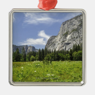 Schilderachtig Yosemite Vallei, Californië Zilverkleurig Vierkant Ornament