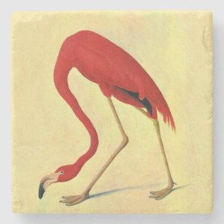Schilderen van de Flamingo van Audubon het Stenen Onderzetter