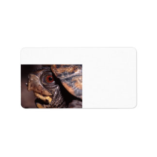 schildpad etiket