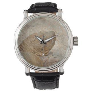 schildpad hoofd dichte omhoog oude schildpad horloges