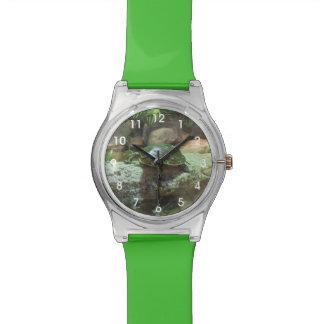 Schildpad Horloge
