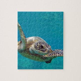 Schildpad van het Zee van Hawaï de Groene - Honu Puzzel