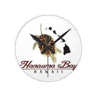 Schildpad van het Zee van Hawaï de Groene Ronde Klok