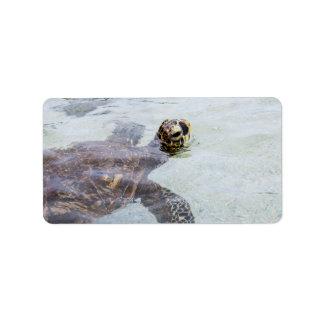 Schildpad van het Zee van Honu de Hawaiiaanse - de Etiket