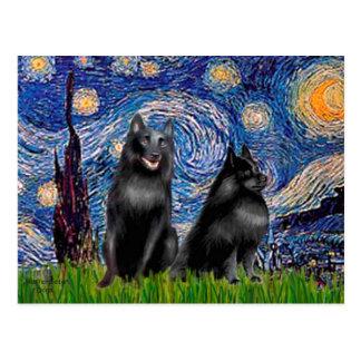 Schipperkees (twee, 5& 6) - Sterrige Nacht Briefkaart