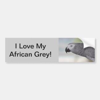 Schitterende Afrikaanse Grijze Papegaai Bumpersticker