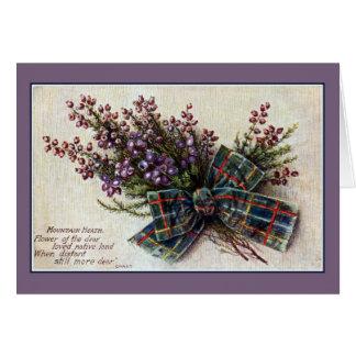 Schots de clanlint van de vintage Dopheide van de Briefkaarten 0