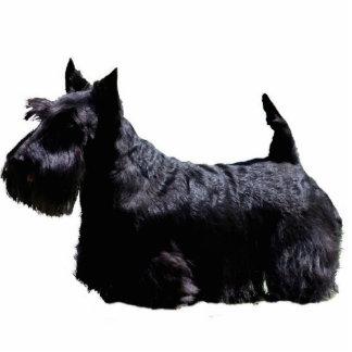 Schots Terrier Fotobeeldje Ornament