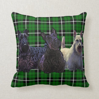 Schots zwart/wheaten Terrier, de groene plaid van Sierkussen