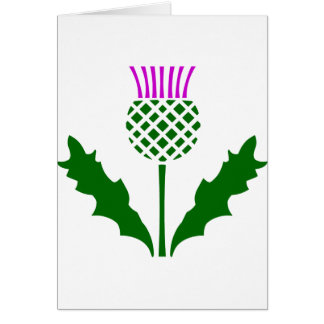Schotse Distel Briefkaarten 0