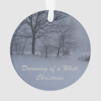 Schuur in een Blizzard van Maine Ornament