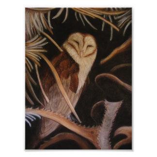 schuur uil in pastelkleur het dierlijke schilderen fotografische afdruk
