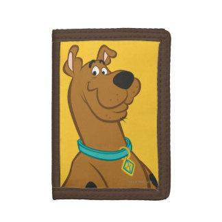 Scooby Doo   Schrijver uit de klassieke oudheid Drievoud Portemonnee