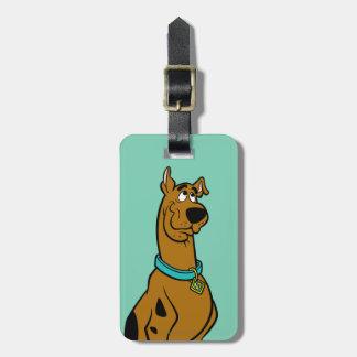 Scooby Doo stelt 27 Bagagelabel