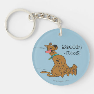 Scooby Doo stelt 47 Sleutelhanger