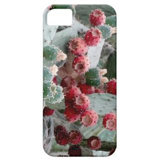 SE van de fotoiPhone van de cactus + iPhone 5/5S Barely There iPhone 5 Hoesje