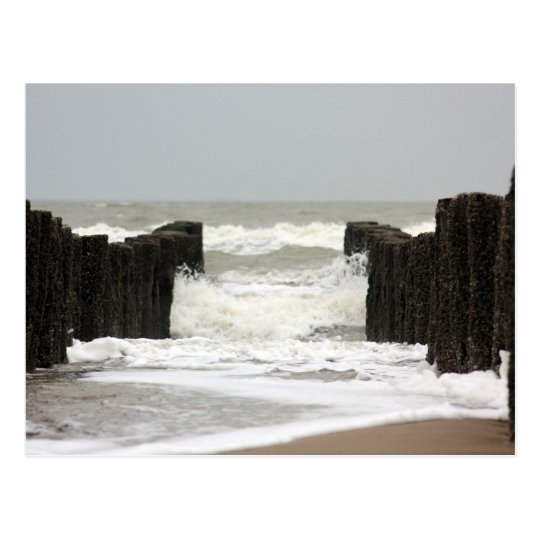 Sea Briefkaart