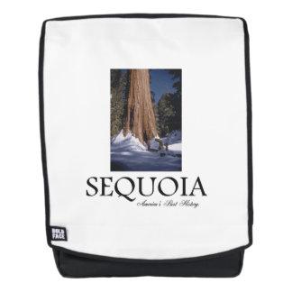 Sequoia ABH Rugtassen