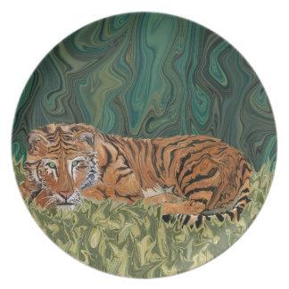 Serendipity van de Zondag van de tijger Bord